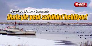 Dereköy Balıkçı Barınağı İhaleye Açıldı
