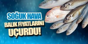 Soğuk hava balık fiyatlarını uçurdu