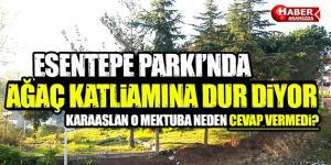 Esentepe Parkı'nda Ağaç Katliamı! Karaaslan Mektuba Neden Cevap Vermedi!