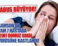 Samsun'da 7 Hastada H1N1 Domuz Gribi Virüsüne Rastlandı