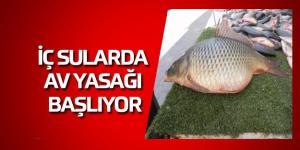 Samsun'da İç Sularda Av Yasağı Başlıyor
