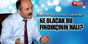 Erhan Usta Fındık Üreticilerinin Sorununu Gündeme Taşıdı
