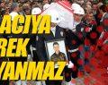 Kavak Şırnak'ta Şehit olan Ersan Gürpınar'a Ağladı