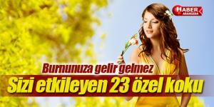Burnunuza Gelir Gelmez Sizi Hep Daha İyi Hissettiren 23 Koku
