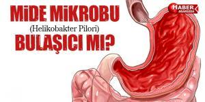 Mide Mikrobu 'Helikobakter Pilori' Bulaşıcı mı?