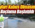 Tekkeköy Belediyesi Karasinek ve Sivrisineklerle Mücadele ediyor
