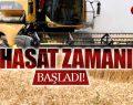 Biçerdöverle Buğday Hasadı Başladı