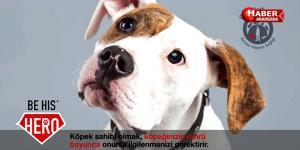 Balkan Ülkelerinde Sokak Köpeği Popülasyonunun Kontrolü Kampanyası