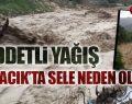 Şiddetli Yağış Ayvacık'ta Sele Neden Oldu!