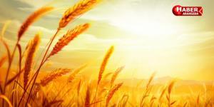 Bitkisel Üretime Destekleme Yürürlüğe Girdi