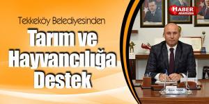 Tekkeköy Belediyesinden tarım ve hayvancılığa destek