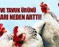 TAVUK VE TAVUK ÜRÜNÜ FİYATLARI NEDEN ARTTI!