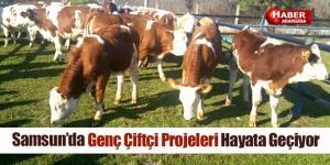 Samsun'da Genç Çiftçi Projeleri Hayata Geçiyor