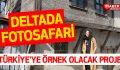 TÜRKİYE'YE ÖRNEK OLACAK 'DELTADA FOTOSAFARİ'