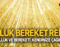 BOLLUK BEREKET REİKİSİ