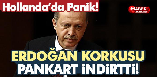 Hollanda'da Erdoğan Korkusu Her Yanı Sardı!