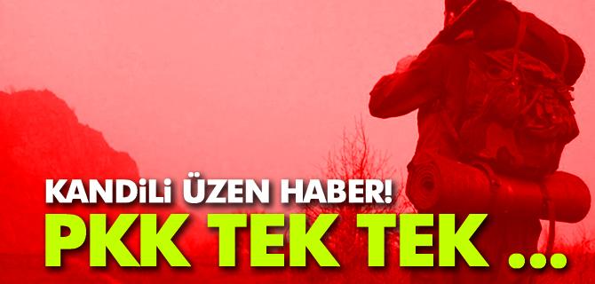 PKK'ya Katılım Azaldı Tek Tek Teslim Oluyorlar!