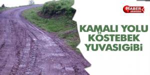 KAMALI YOLU KÖSTEBEK YUVASI