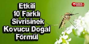 Etkili 10 Doğal Sivrisinek Kovucu