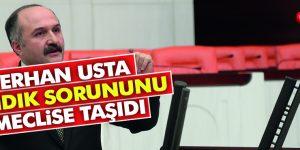 USTA 'FINDIK ÜRETİCİSİ YOKSULLAŞIYOR'