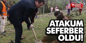 Atakum'da doğa seferberliği!