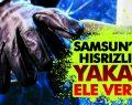 Samsun'da Hırsızlık! Yakayı Ele Verdi!