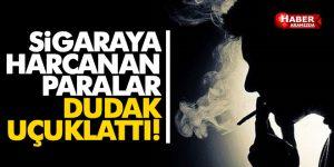 Sigaraya Harcanan Para Dudak Uçuklattı