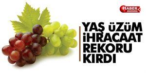 Yaş üzüm ihracatı rekor kırdı