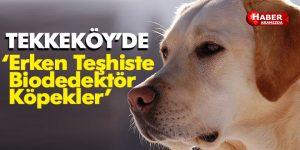 Tekkeköy'de 'Erken Teşhiste Biodedektör Köpekler' projesi