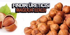 Erhan Usta 'Fındık üreticisi mağdur değil mi?'