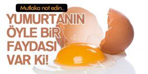 Yumurtanın Bu faydasına İnanamayacaksınız