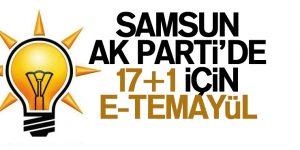 AK Parti'de bayram havasında e-temayül