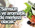 Büyükşehir Belediyesi'nden tıbbi ve aromatik bitki üretimine destek