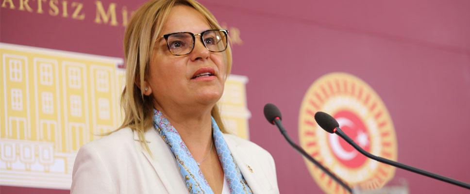 Hancıoğlu'ndan Meclis'te 'çiftçinin bekası' çıkışı