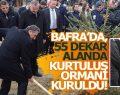 BAFRA'DA, 55 DEKAR ALANDA KURTULUŞ ORMANI KURULDU!