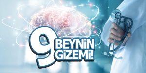 İnsan vücudunun en gizemli organı Beyin!