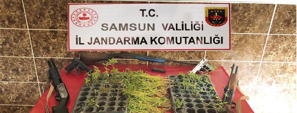 SAMSUN'DA JANDARMADAN SUÇ ÖRGÜTÜNE DARBE