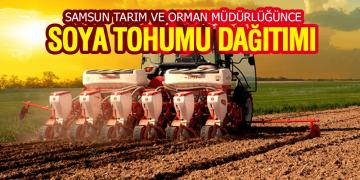 Samsun Tarım ve Orman Müdürlüğünce Soya Tohumu Dağıtımı
