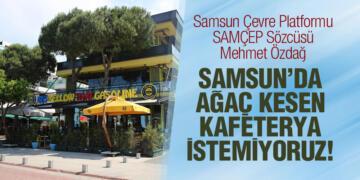 Samsun Çevre Platformu SAMÇEP Sözcüsü Mehmet Özdağ Kafeterya'nın Ağaç Kesmesini Eleştirdi