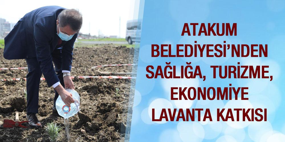 Lavanta Bahçeleri Atakum'a Derin Nefes Aldıracak