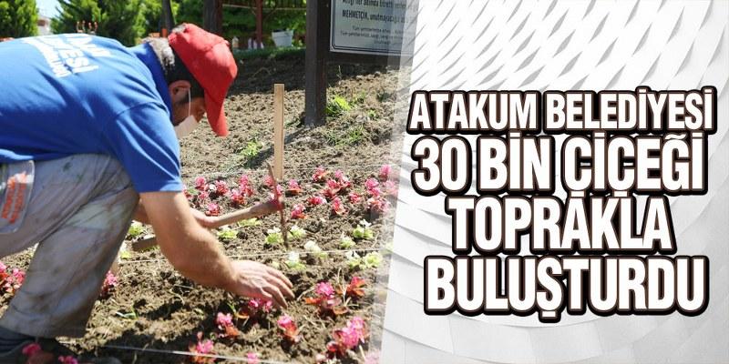 Atakum'un Parkları Yazı Rengarenk Karşıladı