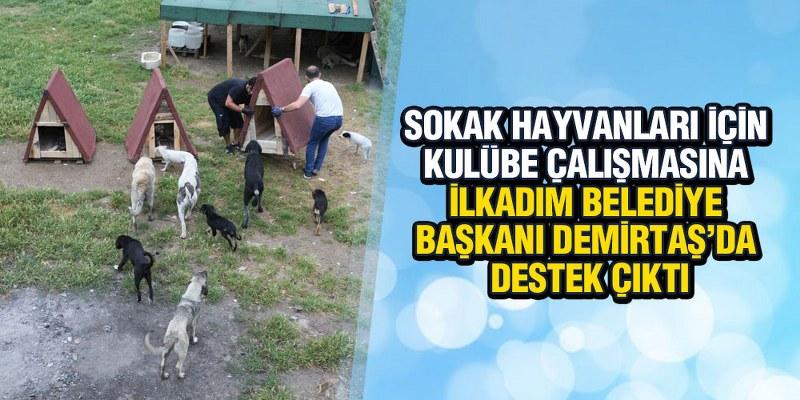 Sokak Hayvanları İçin Kulübe Çalışmasına Başkan Demirtaş'da Destek Çıktı